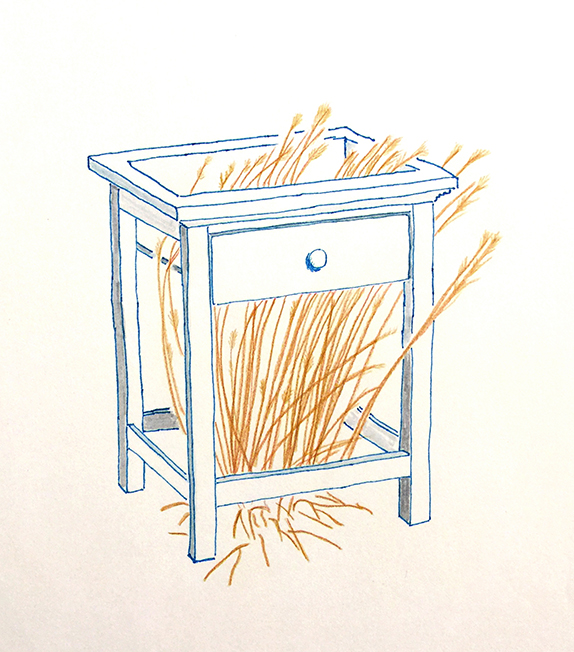 Room to Grow, concept sketch. Freedom Baird